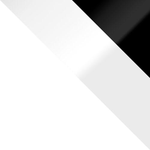 biały / biały połysk + czarny połysk