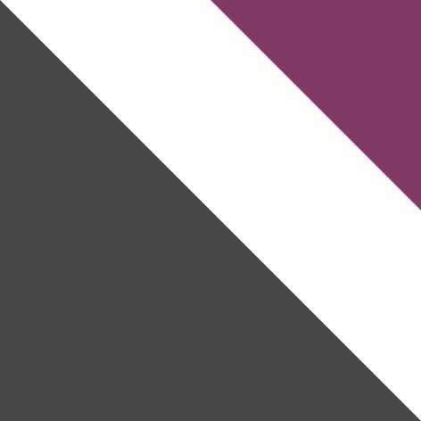 szary mat / biały + fioletowy