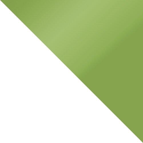 biały / zieleń połysk