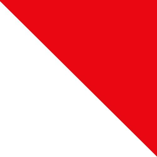 biały Jersey / czerwony