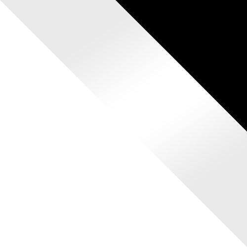 biały / biały połysk + czarny