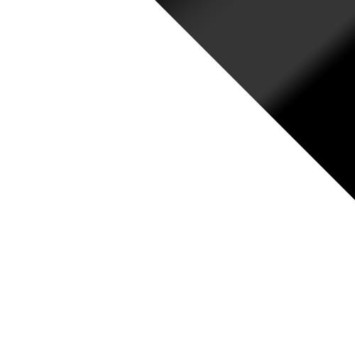 biały / biały + czarne wstawki połysk
