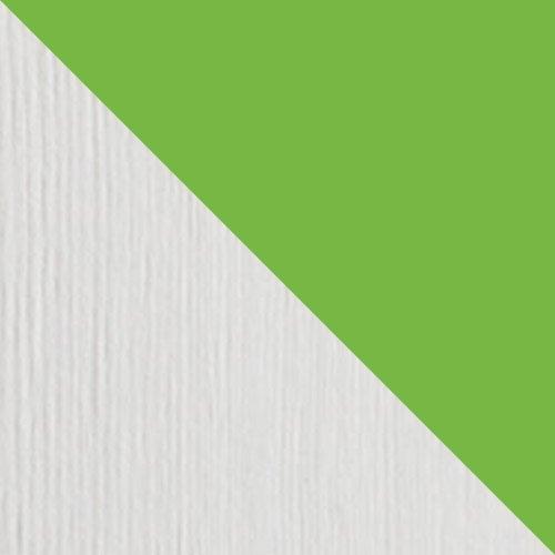 Sosna barwiona na bialy + seledynowy