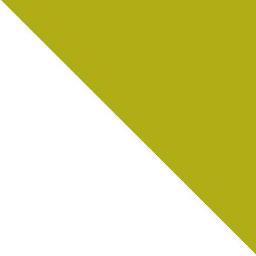 biały / seledyn połysk